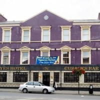 €50 million worth of properties - including the GAA's birthplace - sold at auction