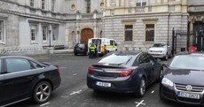 Sniffer dogs search Leinster House, Ming Flanagan breathes a sigh of relief