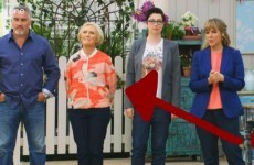 Mary Berry caused Marks and Spencer to sell out of this snazzy jacket