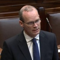 'I will not send Irish troops into civil war in Syria' - Coveney
