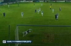 'I didn't think it went in' - Watch Chris Forrester's spectacular 30-yard strike