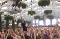 This Oktoberfest fails compilation is horrifying