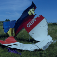 Families of German victims of MH17 are to sue Ukraine