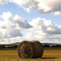 Fertiliser and feed-supplier makes €87m - and thanks mother nature for it