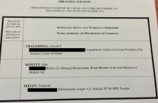 McNulty appears as IMMA board member on Seanad ballot paper - even though he's resigned
