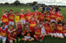 Kilkenny hurlers and this Cork U7 football team are all having a go at Joe Brolly*
