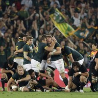 Springboks underline the task facing Schmidt's Ireland in November