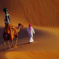 Google opts for Camel View to help capture Arabian desert