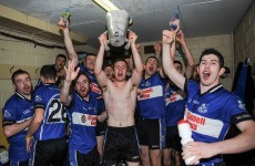 Cork hurling champions Sarsfields - 'We don't forget that we were down for 51 years'
