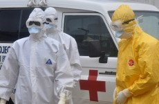 Someone bought ebola.com and is trying to sell it off for €118,500