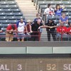 Fan dies after falling from stands at baseball game