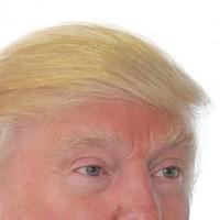 Trump: 'Sean O'Rourke is an a*****e. He took off my hair. This is my hair'