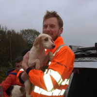 These 3 beagle puppies were rescued from a mineshaft ... but one is still missing