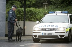 Garda dogs help find cocaine and cannabis in Finglas house