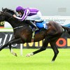 Aidan O'Brien's Adelaide comes from last to first to win Cox Plate in Melbourne