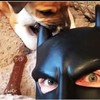 BatDad is back with a new compilation, and he's better than ever