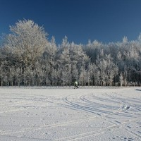 Open thread: What's your favourite thing about winter?
