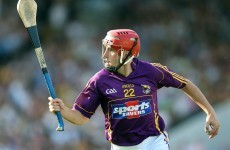 Joe Kelly leads Shelmaliers to a historic Wexford SHC title