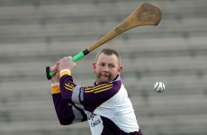 Legendary Wexford hurling goalkeeper is becoming a senior selector