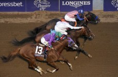 Bayern wins $5m Breeders' Cup Classic by a nose after surviving stewards' inquiry