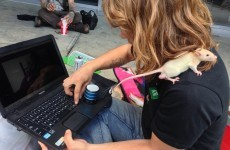 Here's how homeless people in New York use technology