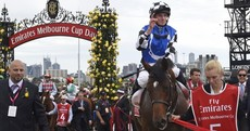 Protectionist wins Melbourne Cup but tragedy overshadows Australia's biggest race