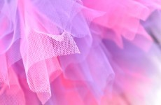 Police search for males in pink tutus who beat men in homophobic attack