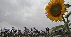 Sprint Finish: everything you need to know after stage 11