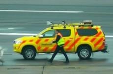 Hyper swan creates complete havoc on Heathrow runway