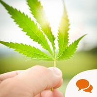 Opinion: Marijuana is legal in nearly half of US States –Ireland should follow suit