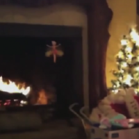 This six-second Vine is the ultimate in 'NOOOOOOOO'