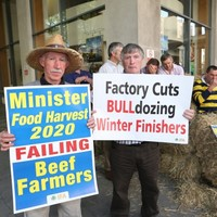 Thousands of Irish farmers will blockade meat factories for 48-hours