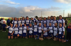 Cork's Milford and Wexford's Oulart claim weekend senior club camogie titles