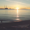 Video: The weather forecast is brutal. Spare 2 minutes to bask in some Irish summer sunshine?