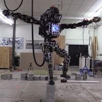 This Google-owned robot reenacts crane kick scene from Karate Kid
