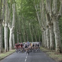 Sprint Finish: here's everything you need to know about Stage 12 of Le Tour