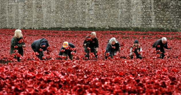 In photos: The impressive poppy display at Tower of London is being dismantled
