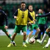 Keane and Gibson released from Ireland squad as attention turns to USA friendly