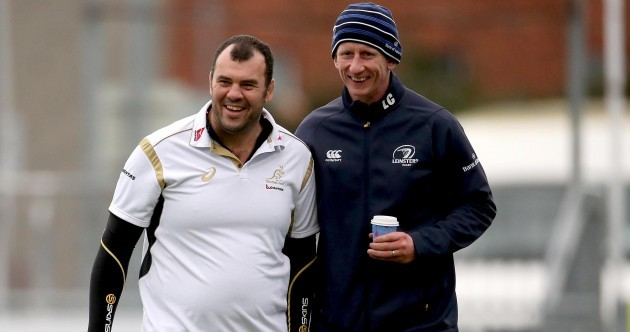 There was a nice Leinster reunion between Michael Cheika and Leo Cullen earlier