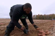This NFL player gave up $12.5 million to become a farmer