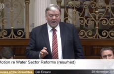 Fine Gael TD withdraws comments comparing some water protesters to ISIS
