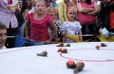 Aptly-named 'Zoomer' takes world Snail Racing crown