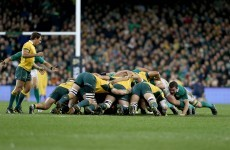 Wallabies' Aviva Stadium dressing-room damaged after defeat to Ireland