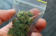 €60,000 worth of cannabis found at a house in Cork