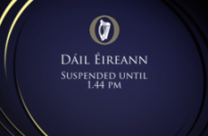 Dáil suspended three times IN ONE HOUR as Burton and SF clash on abuse claims