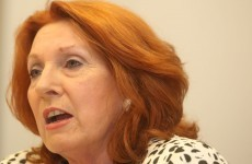 Kathleen Lynch: 'I've visited mental health centres, there are very few issues'
