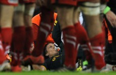 Jean de Villiers suffers 'significant ligament damage' after horror injury against Wales