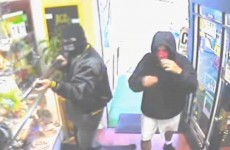 Watch: Paco the chihuahua puts paid to armed robbery