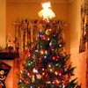 Poll: Have you put up your Christmas tree?