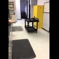 Here's what happens when you throw liquid nitrogen on the floor